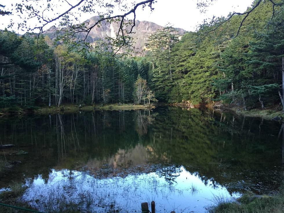 童話の森2